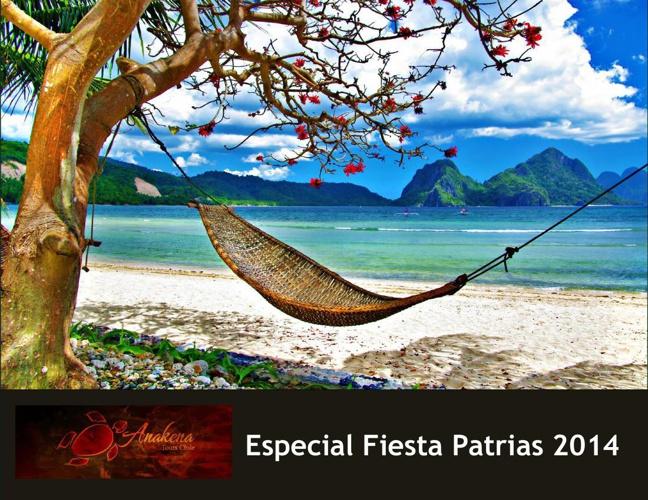 Especiales fiestas patrias sudamerica