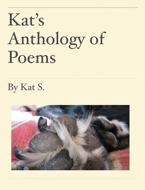 Kat's poetry anthology