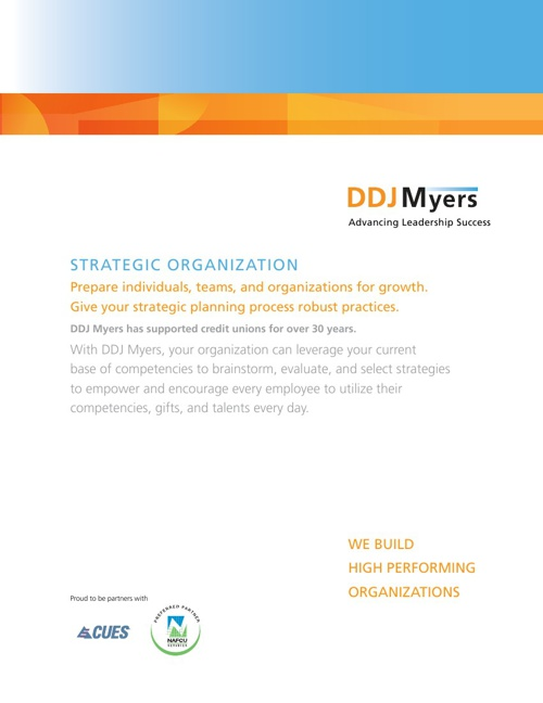 Strategic Organization Brochure Test