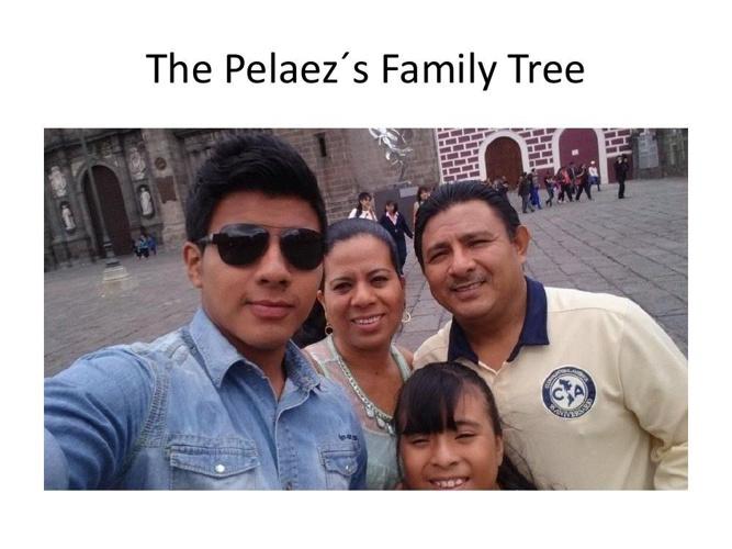The Pelaez´s Family Tree [Autoguardado]