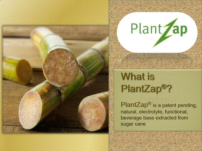 PlantZap Investor Presentation Final