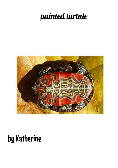 painted turtules