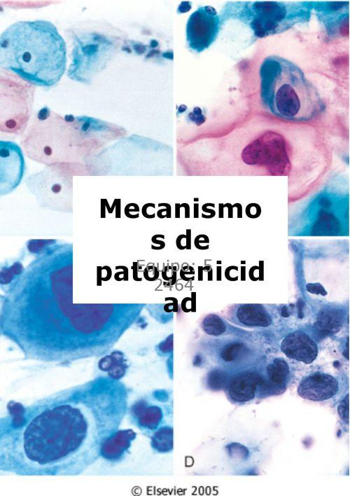 Mecanismos de Patogenicidad (1)