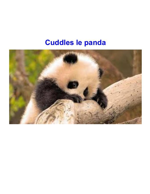 Cuddles: Baby Panda
