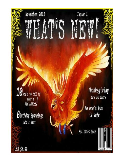 November Issue 1