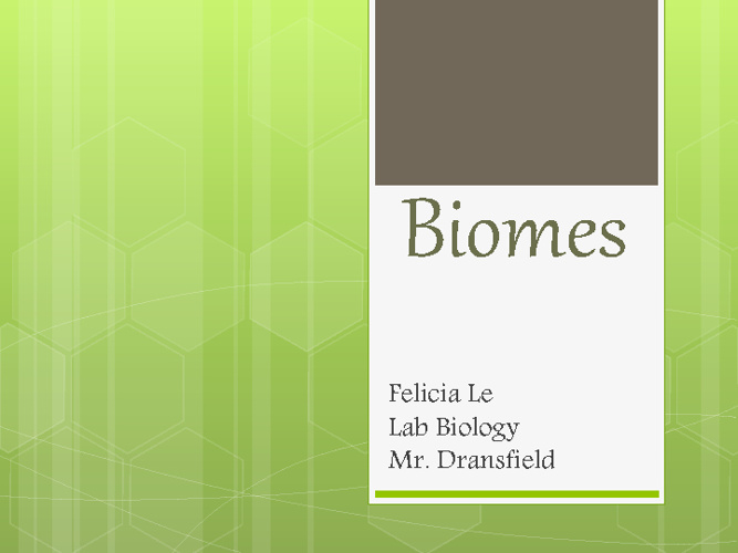 Biome Book by Felicia Le