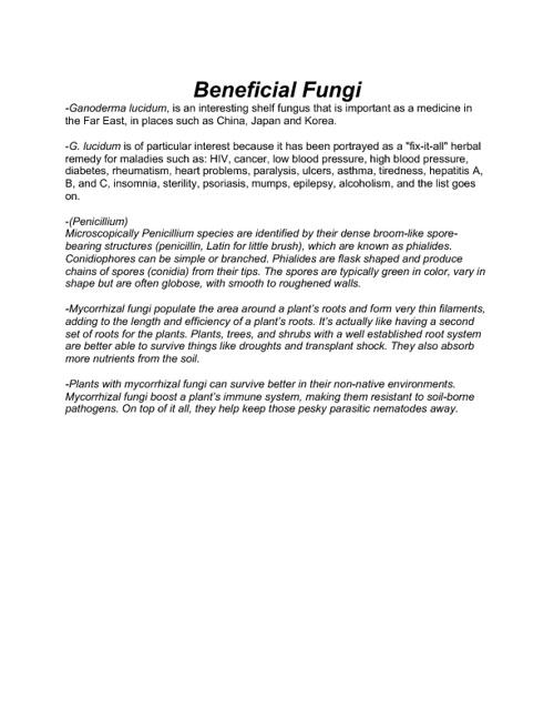 Protist & Fungi - 7th