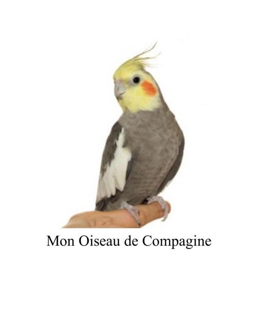 Mon Oiseau de Compagine