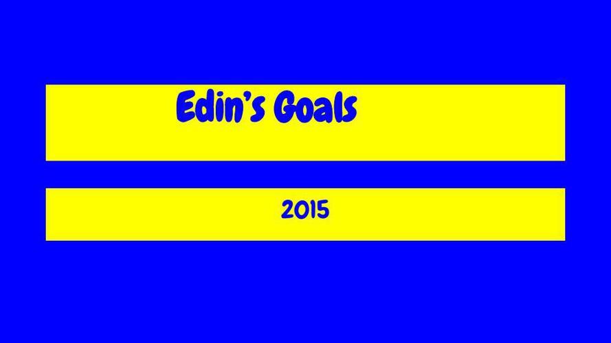 Goal Setting Template Edin Jukic