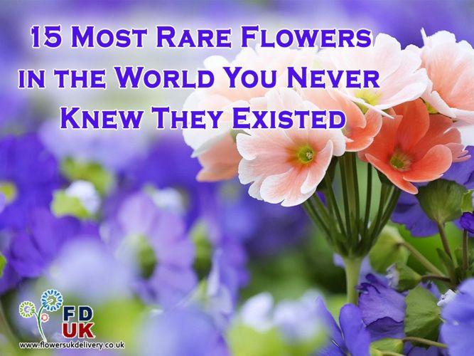 15 Stunning and Endangered Flower Species
