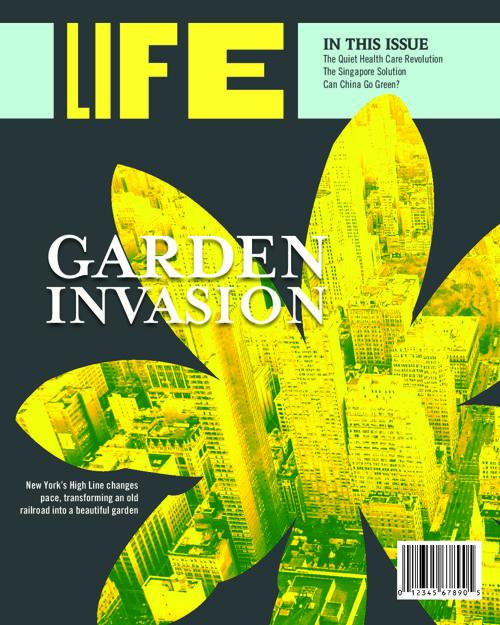 Life Magazine Design Test