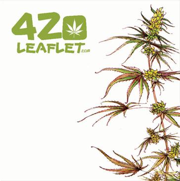 420 LEAFLET #1