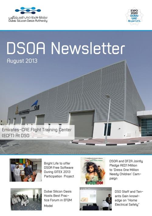DSOA Newsletter August 2013