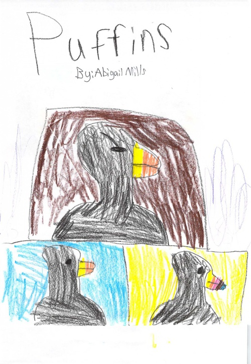 Puffins by Abigail