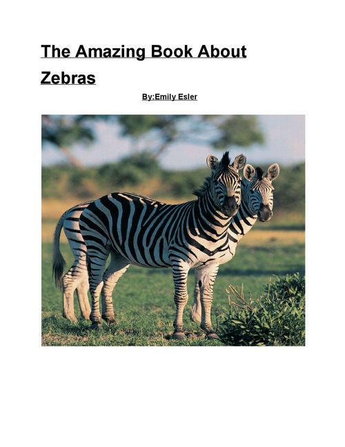 The Amazing Book About Zebras