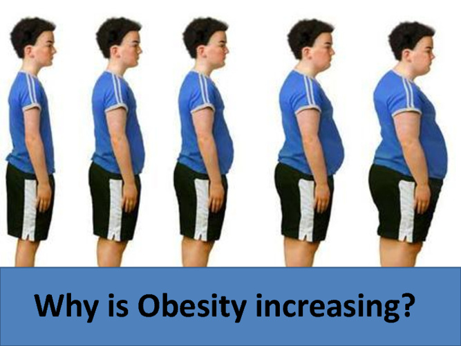 Why is obesity increasing? by Semih