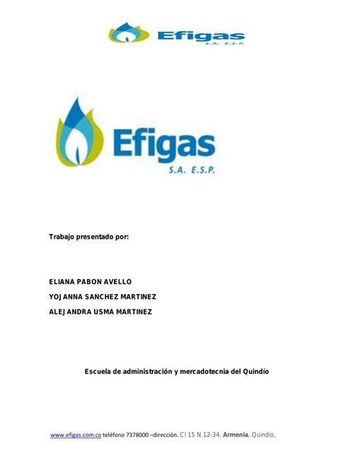 Copy of EFIGAS