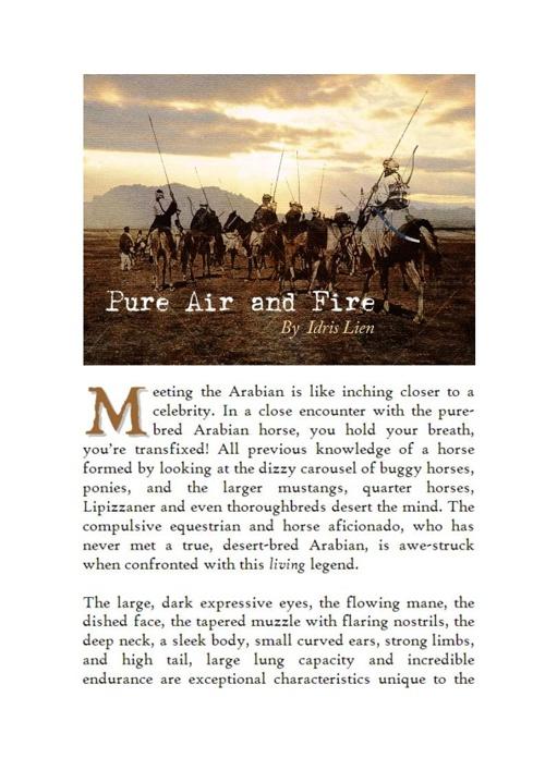 Pure Air & Fire--Idries Lien