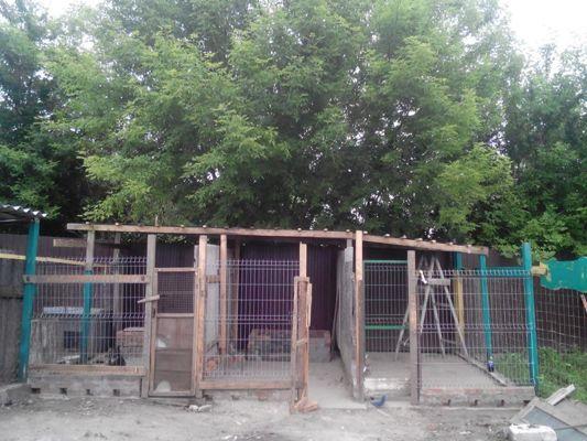 Copy of utulek Friend na Ukrajině