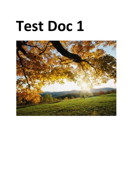 Copy of Copy of Copy of test pdf