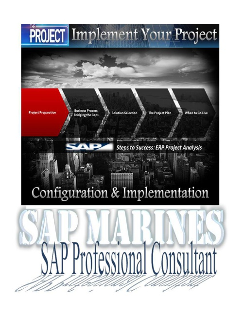 SAP Consultant Course With Project