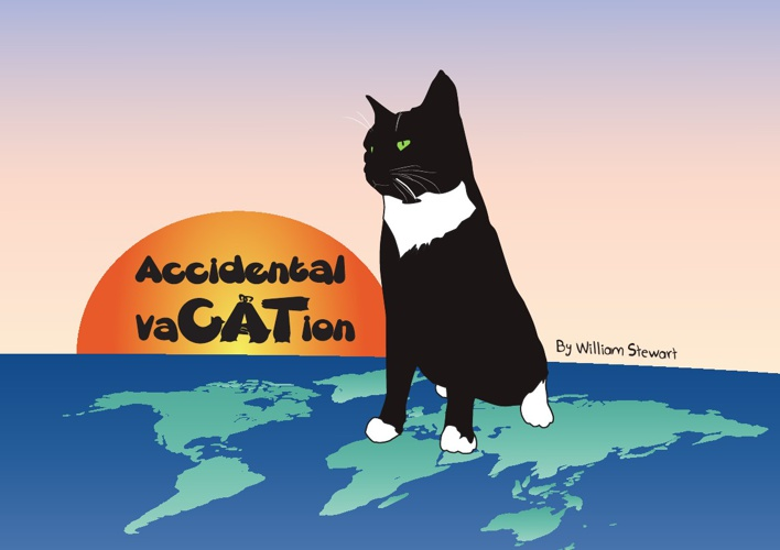 Accidental Vacation