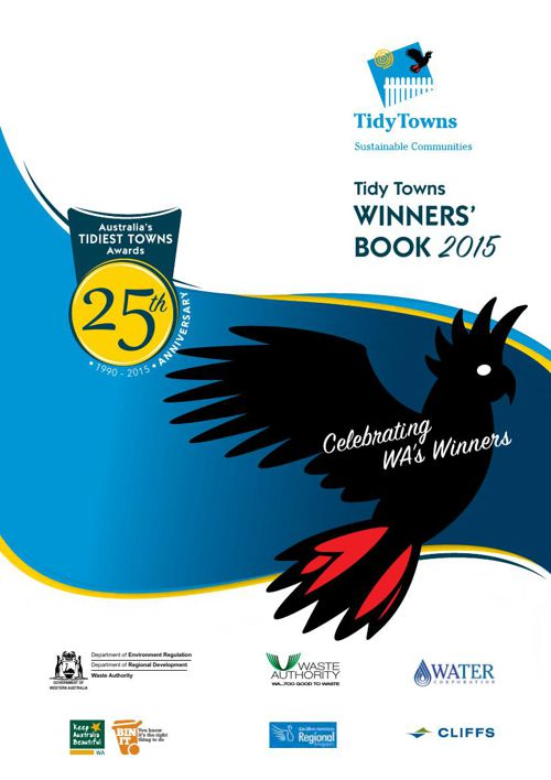 Copy of Winners book Titdy Towns 2015