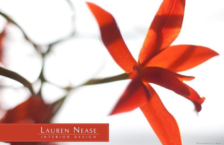 Lauren Nease: Interior Design Portfolio