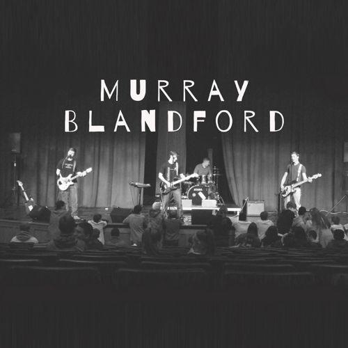 Murray Blandford Brand Guide