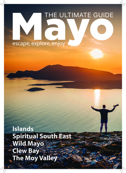 Mayo Guide