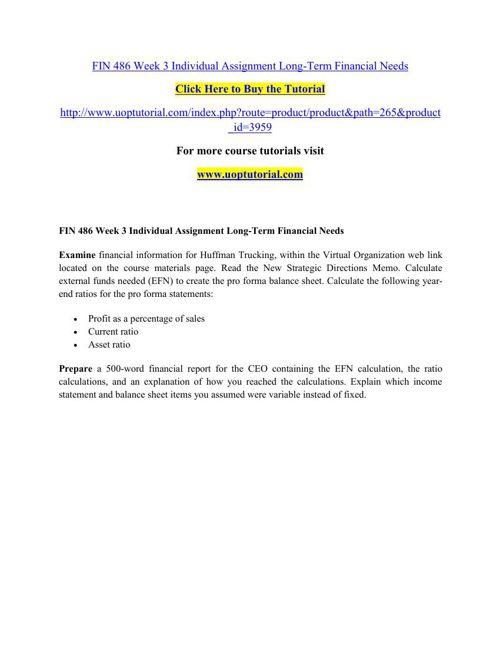 FIN 486 Week 3 Individual Assignment Long-Term Financial Needs