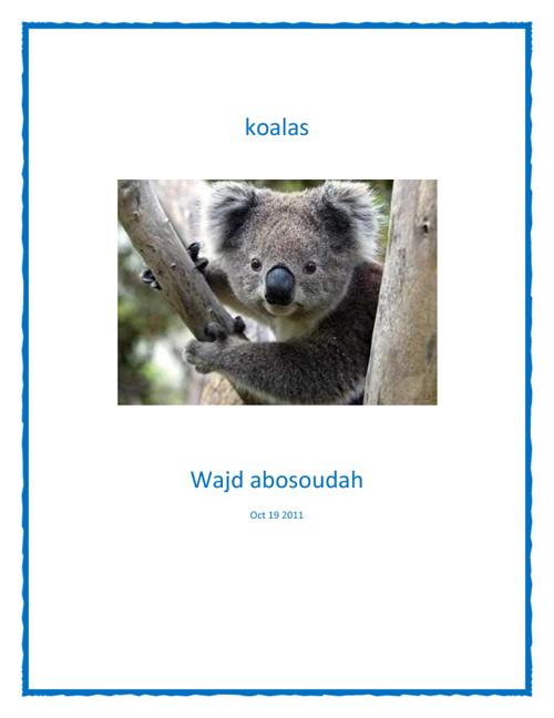 Koalas Life