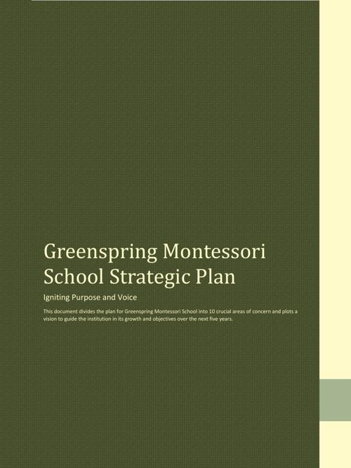 Montessori Strategic Plan