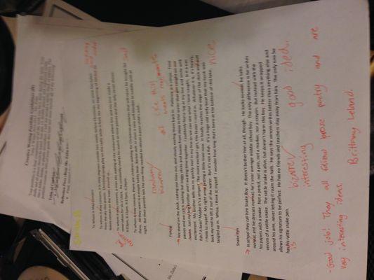 Prose Poetry Peer Edits