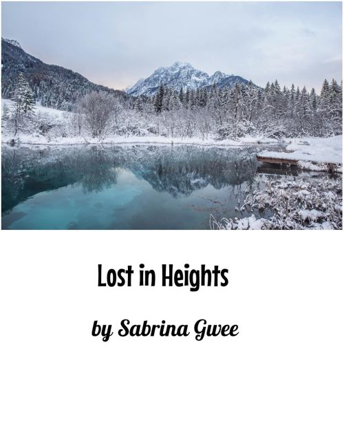 Lost in Heights
