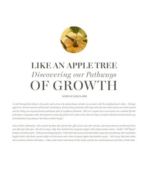 Like an Apple Tree
