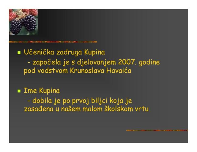 UZ Kupina