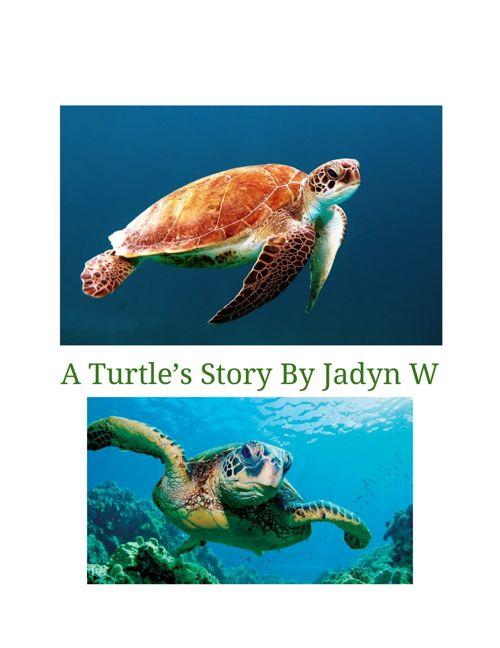 WritersNotebook-JadynWolfe