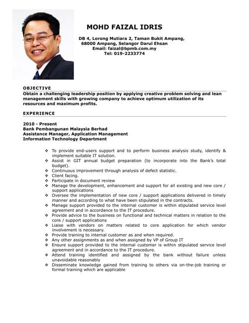 My Resume 2013
