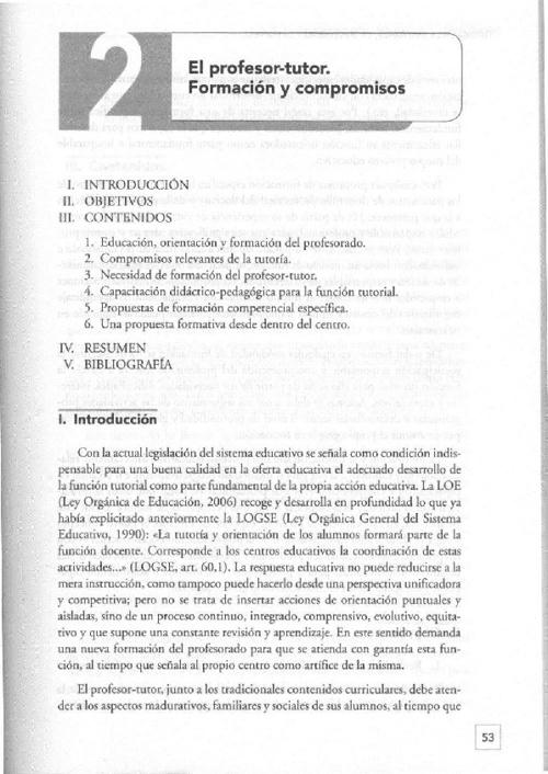 Profesor-tutor, formación y compromisos
