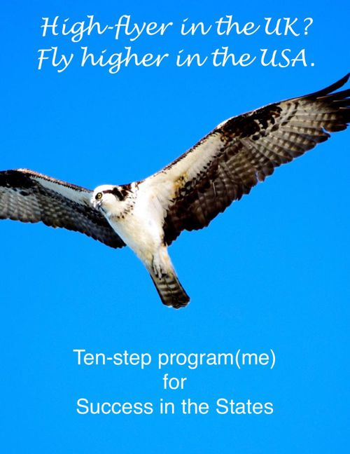 Ten Tips for the USA