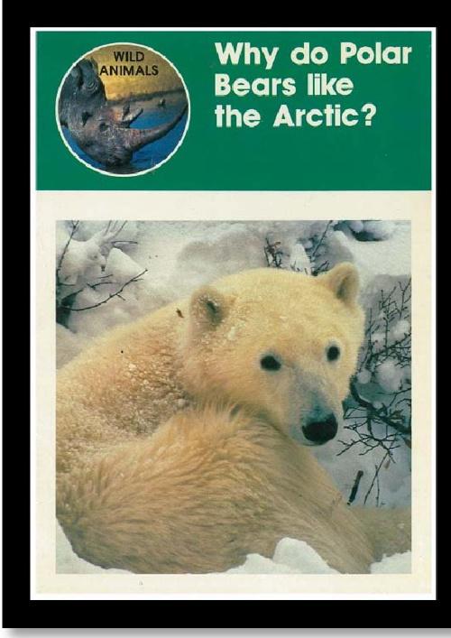 Why do Polar Bears Like the Arctic