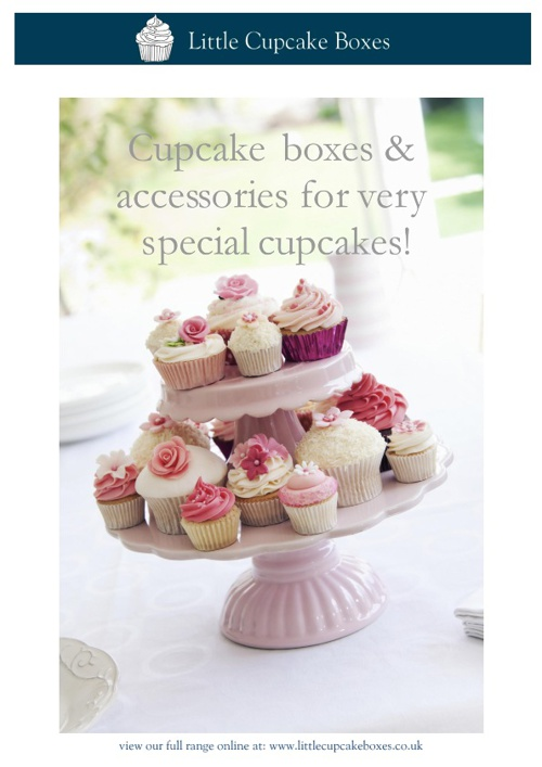 Little Cupcake Boxes