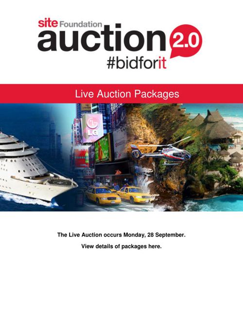 SITE Auction 2.0 Live Auction