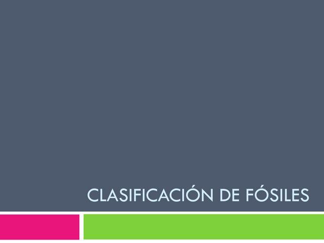 Clasificación de fósiles1