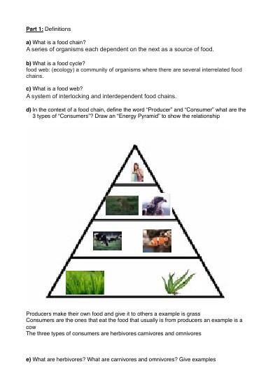Science Flipbook