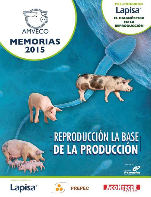 Memorias Amveco 2015