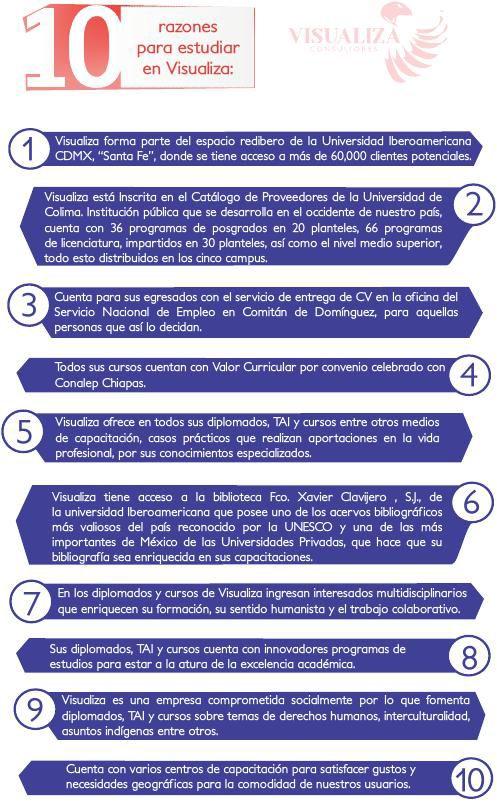 DIPTICO VISUALIZA CONCULTORES MÉXICO, S.C.