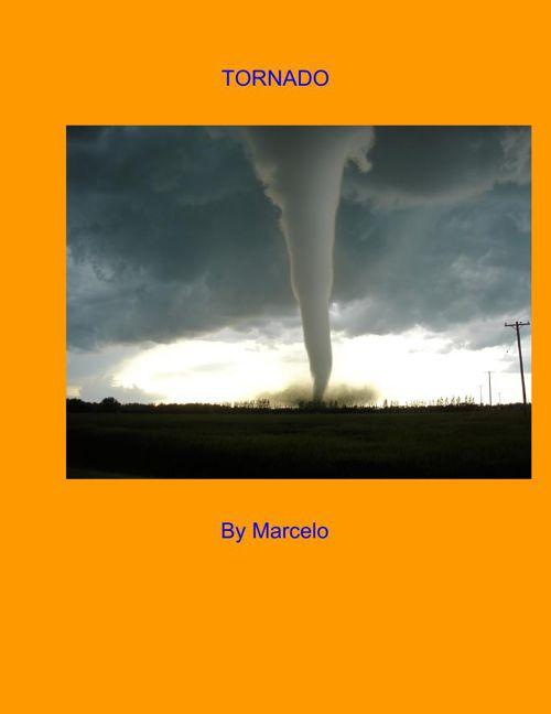 Marcelonaturaldisasterbook