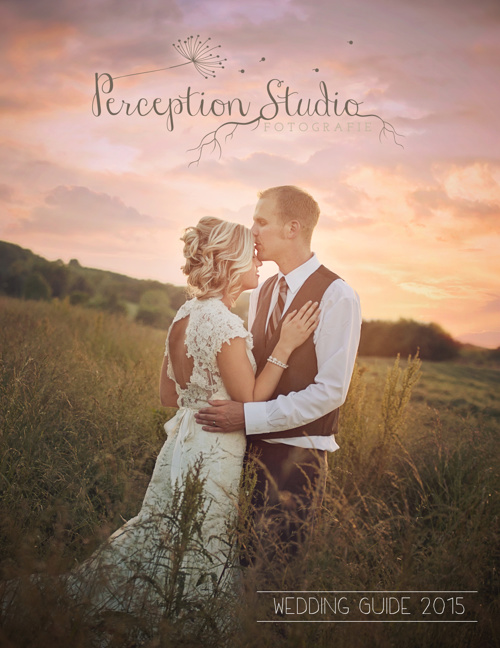 Perception Studio Wedding Guide